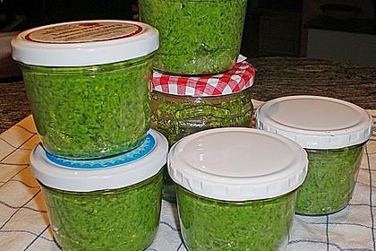 Bärlauch - Pesto 3