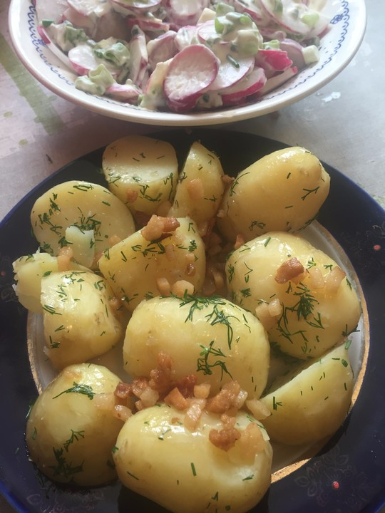 Frühkartoffeln mit Speckgrieben und Dill (Rezept mit Bild) | Chefkoch.de
