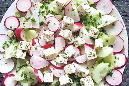 Salatgurke mit Radieschen und griechischem Feta 1