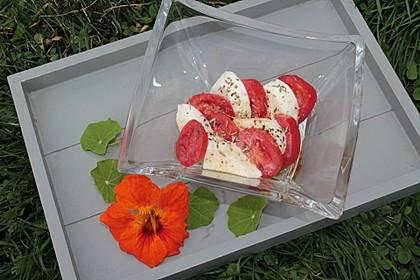 Tomaten-Mozzarella-Salat 1