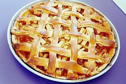 American Apple Pie 23