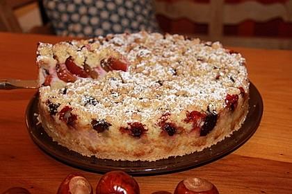 Zwetschgen-Streuselkuchen mit Pudding 29