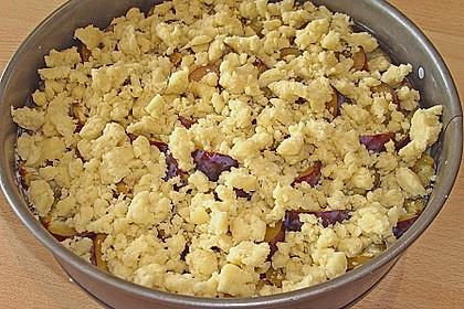 Zwetschgen-Streuselkuchen mit Pudding 134