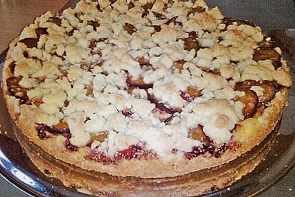 Zwetschgen-Streuselkuchen mit Pudding 93