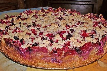 Zwetschgen-Streuselkuchen mit Pudding 24