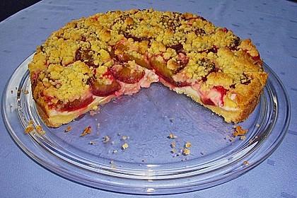 Zwetschgen-Streuselkuchen mit Pudding 47