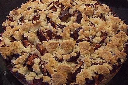 Zwetschgen-Streuselkuchen mit Pudding 126