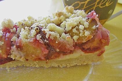 Zwetschgen-Streuselkuchen mit Pudding 74
