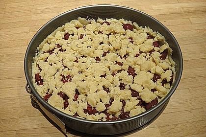 Zwetschgen-Streuselkuchen mit Pudding 114