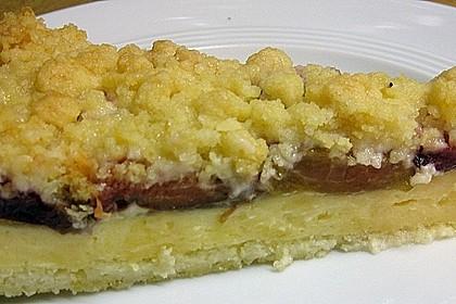 Zwetschgen-Streuselkuchen mit Pudding 101