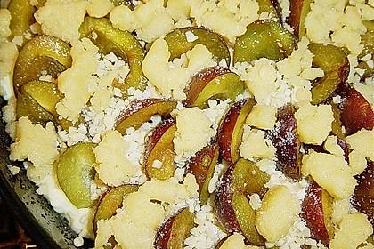 Zwetschgen-Streuselkuchen mit Pudding 100