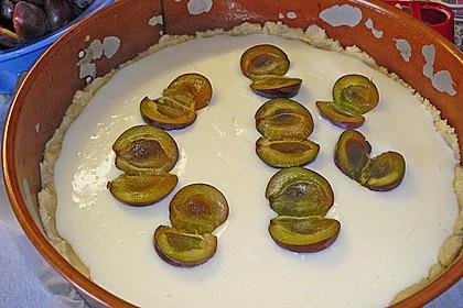 Zwetschgen-Streuselkuchen mit Pudding 119