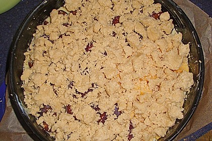 Zwetschgen-Streuselkuchen mit Pudding 140