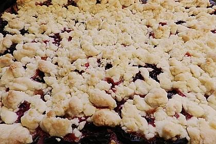 Zwetschgen-Streuselkuchen mit Pudding 103