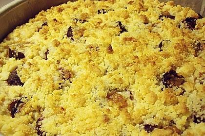 Zwetschgen-Streuselkuchen mit Pudding 127