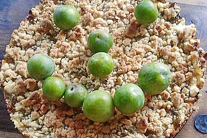 Zwetschgen-Streuselkuchen mit Pudding 120