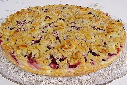 Zwetschgen-Streuselkuchen mit Pudding 6