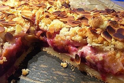 Zwetschgen-Streuselkuchen mit Pudding 28