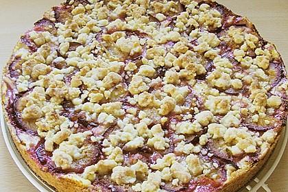 Zwetschgen-Streuselkuchen mit Pudding 46