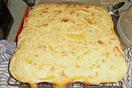 Pfirsich - Mascarpone - Kuchen mit Streuseln 1