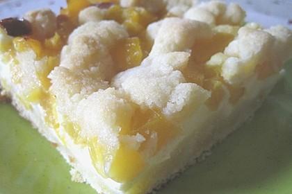 Pfirsich - Mascarpone - Kuchen mit Streuseln