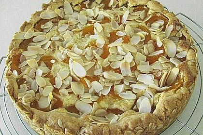 Aprikosenkuchen mit Mandelguss 11