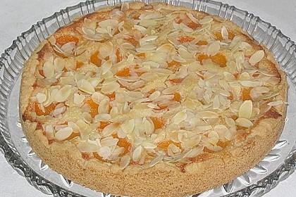 Aprikosenkuchen mit Mandelguss 8