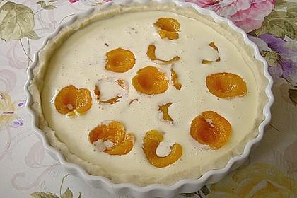 Aprikosenkuchen mit Mandelguss 19