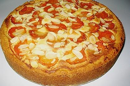 Aprikosenkuchen mit Mandelguss 9