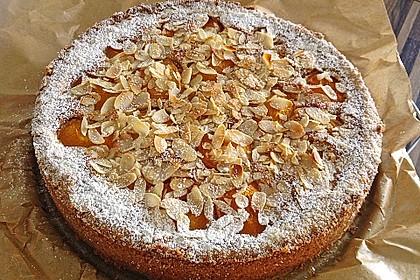 Aprikosenkuchen mit Mandelguss 1