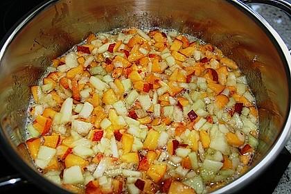 Pfirsich - Melonen - Marmelade 9