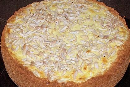 Apfelkuchen mit Puddingguss 14