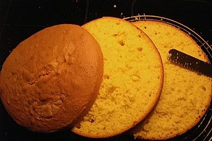 Bäckermeister - Biskuitboden 36