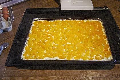 Mandarinen - Schmandkuchen vom Blech 1