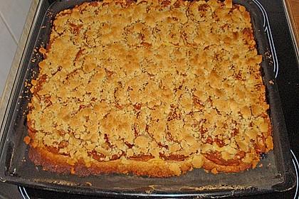 Pudding - Streusel - Kuchen 106