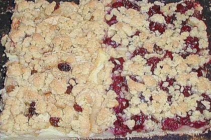 Pudding - Streusel - Kuchen 93