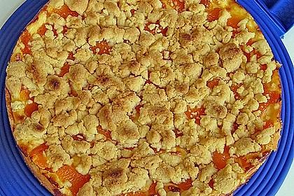 Pudding - Streusel - Kuchen 45