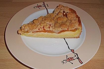 Pudding - Streusel - Kuchen 19