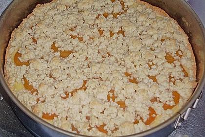 Pudding - Streusel - Kuchen 87