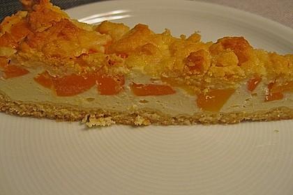 Pudding - Streusel - Kuchen 11