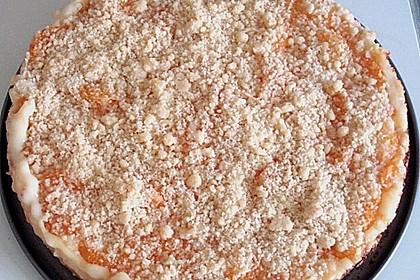 Pudding - Streusel - Kuchen 141
