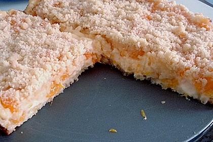 Pudding-Streusel-Kuchen 67