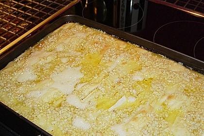 Apfelkuchen 48