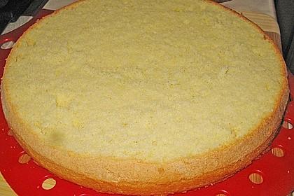Biskuitboden für Torten und Kuchen 6