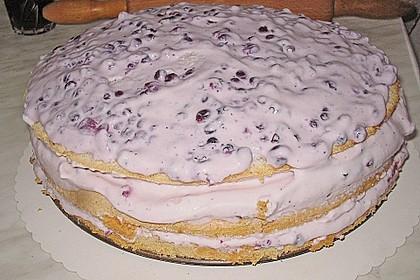 Biskuitboden für Torten und Kuchen 23