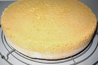 Biskuitboden für Torten und Kuchen 18