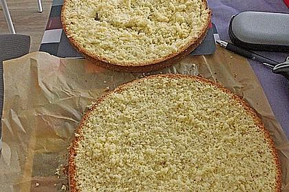 Biskuitboden für Torten und Kuchen 17