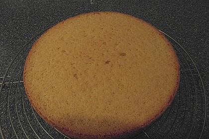 Biskuitboden für Torten und Kuchen 20