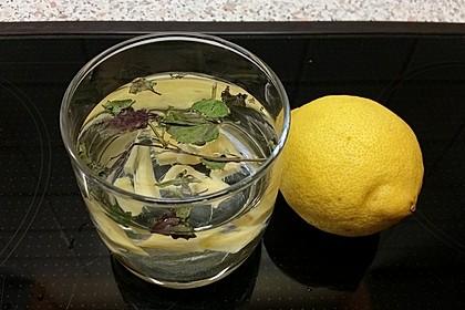 Heiße Zitrone mit Ingwer und Minze 7