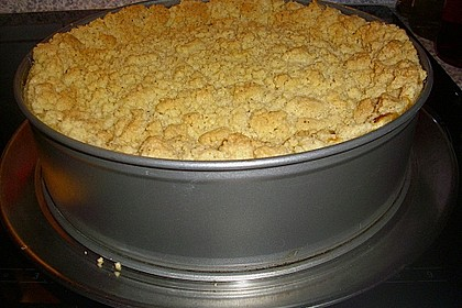 Apfel - Streuselkuchen mit Pudding 33